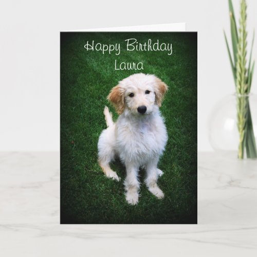 Laura Happy Birthday Golden Doodle Puppy zazzle_card