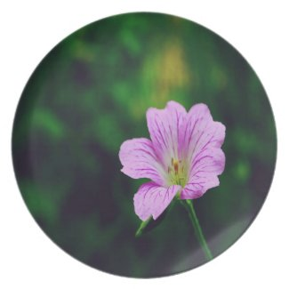 Lavender Flower Dinner Plates