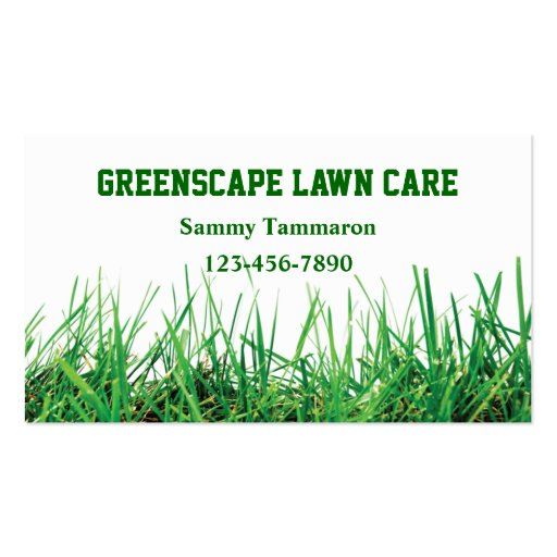 lawn care and landscaping business