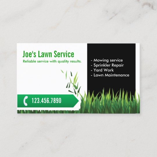 lawn care landscaping professional