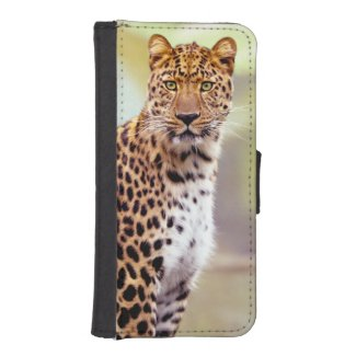 Leopard Photograph Image iPhone SE/5/5s Wallet