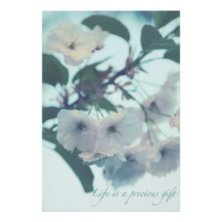 Life is a precious gift poster