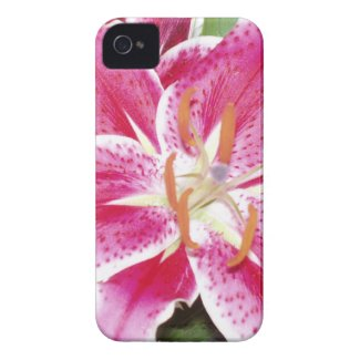 "Lily iPhone 4/iPhone 4S Barely Thereâ""¢ Case casematecase"