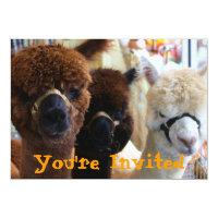 Llama Llama Invitation