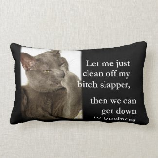 LOL Cat with Attitude! B*t*ch Slapper Cleaning! Pillow