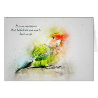 Loss of Pet Bird Custom Sympathy Card