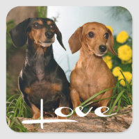 Love Dachshund Puppy Dog Sticker / Seal