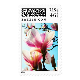 Magnolia flowers - Postage zazzle_stamp