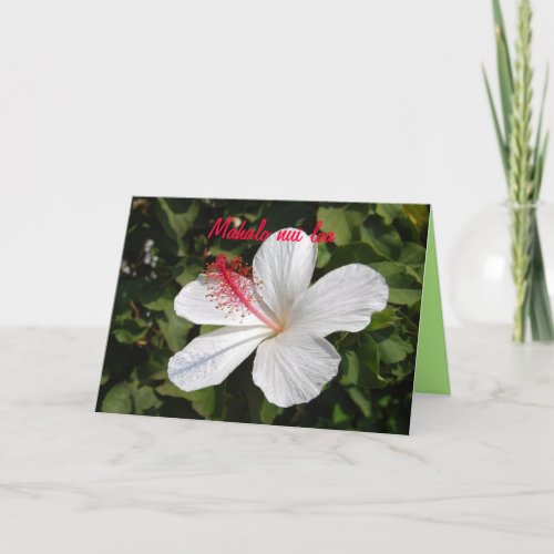 Mahalo Hawaiian White Hibiscus Thank You Card card