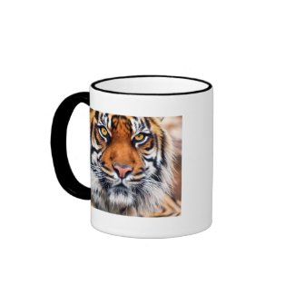 Male Siberian Tiger Mug
