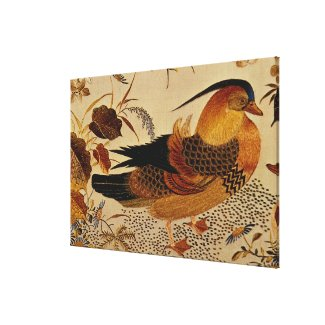 Mandarin Duck Canvas Prints