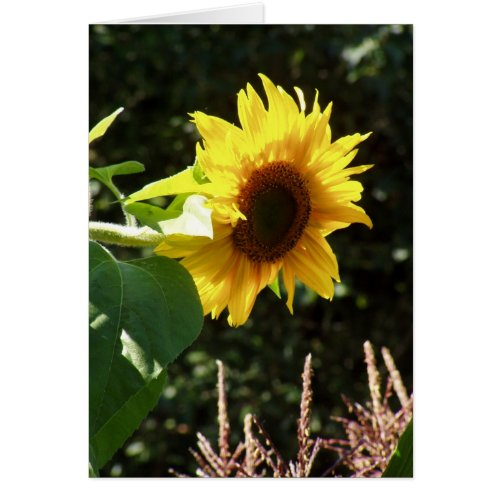 maternal sunflower card