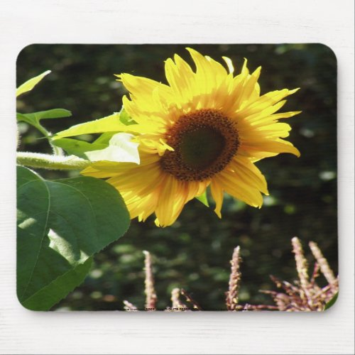 maternal sunflower mousepad