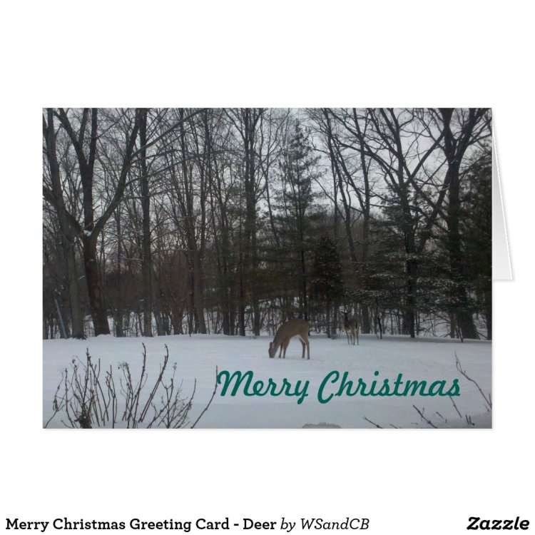 Merry Christmas Greeting Card - Deer