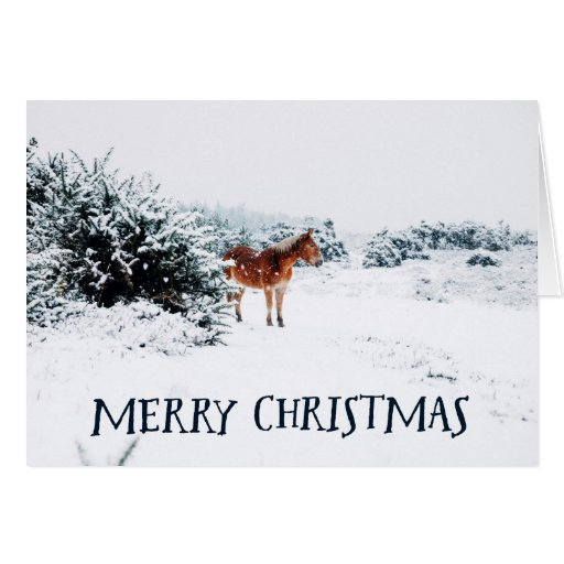 Merry Christmas Rustic Winter Scene With Horse Card Zazzle