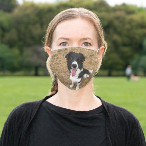 Missy Face Mask Border Collie Dog