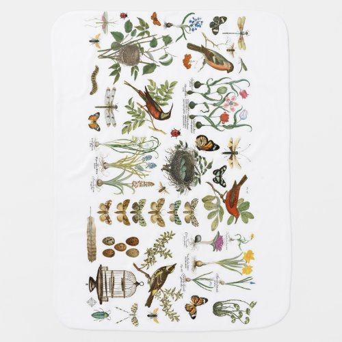 modern vintage french botanical birds and flowers receiving blanket