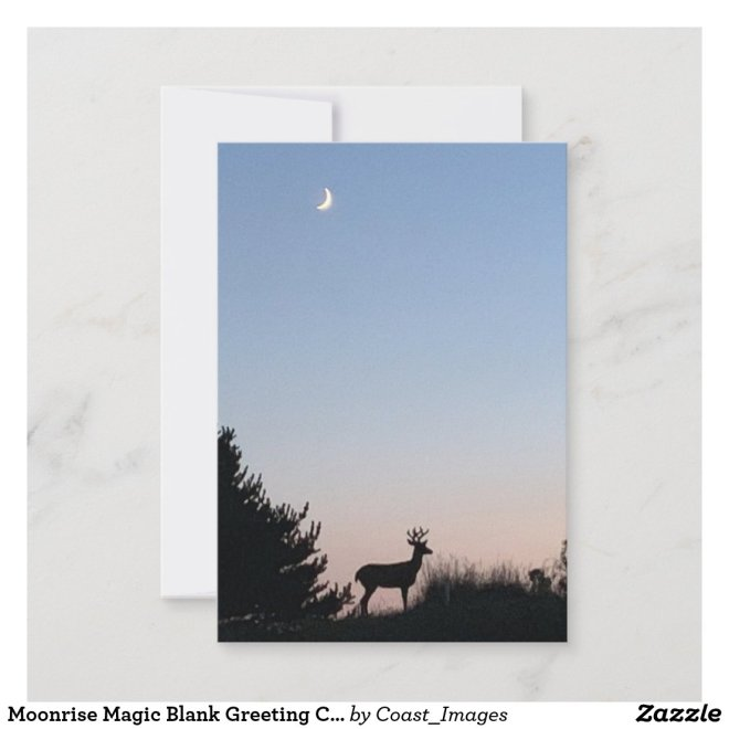 Moonrise Magic Blank Greeting Cards