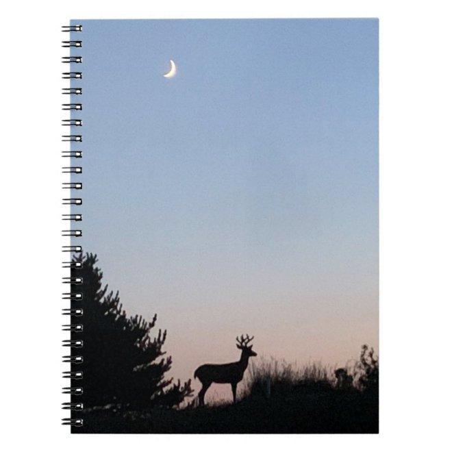 Moonrise Spiral Journal