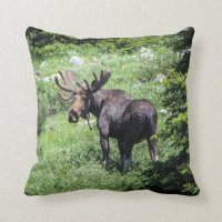 Moose Pillow | Zazzle