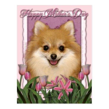 Mothers Day - Pink Tulips - Pomeranian Postcard