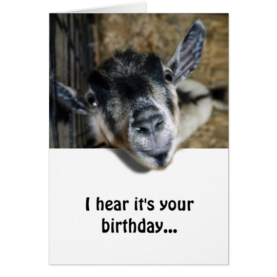 Nosy Goat Looking Up Birthday Card Zazzle Com