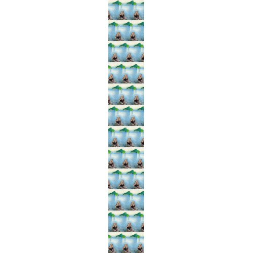 Oakridge Reservoir #4 tie