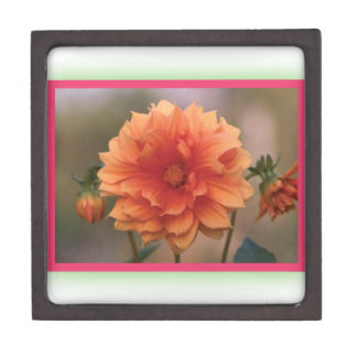 Orange Dahlia Premium Trinket Boxes