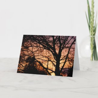Orange Sunset Card card