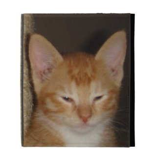 Orange Tabby with Attitude iPad Cases