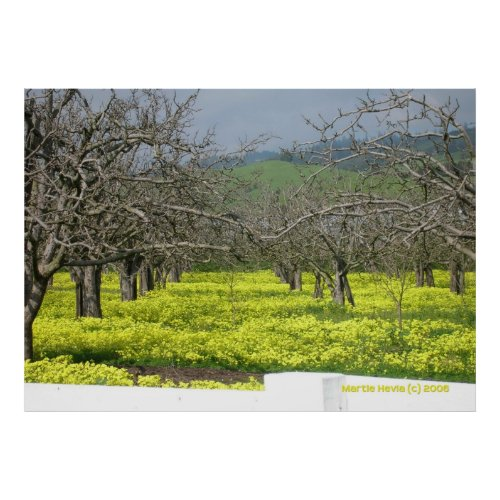 Orchard Mustard Fields zazzle_print