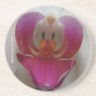 Orchid Face - Coaster coaster
