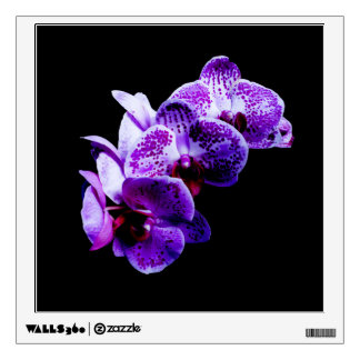 Orchid Wall Decals & Wall Stickers