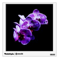 Orchid Wall Decals & Wall Stickers | Zazzle