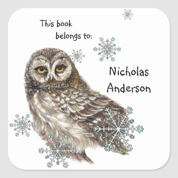 Owl Bird Snowflakes Winter Bookplate art