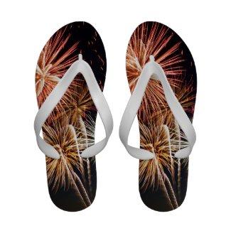 P0541 Flip-Flops