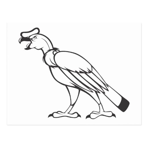 condor andino colouring pages (page 2)