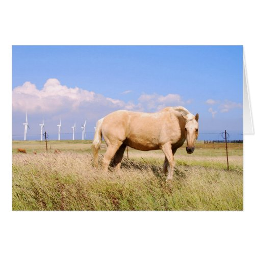 Palomino Horse with Windmills Card card