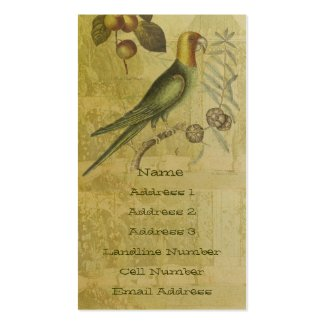Parrot with Plums Double-Sided Standard Business Cards (Pack Of 100)
