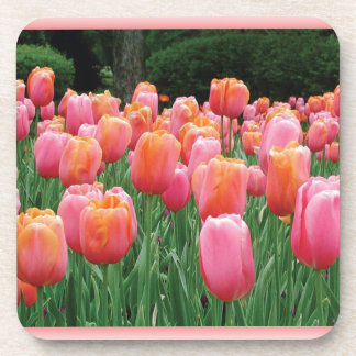 Peach and Pink Tulips Beverage Coaster