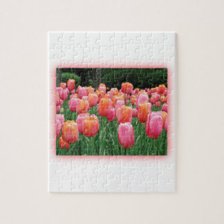 Peach and Pink Tulips Jigsaw Puzzle