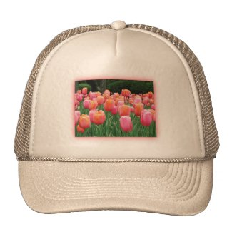 Peach and Pink Tulips Mesh Hats