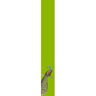 Peacock Tie For Weddings and Special Occasions tie