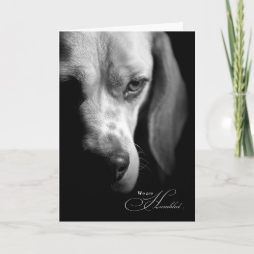Pet Sympathy | Loss of Dog | Beagle Black Card