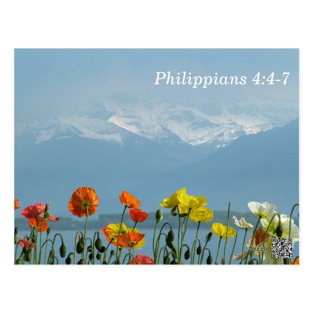 Philippians 447 Scripture Memory Card  Zazzlecom
