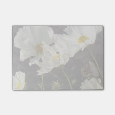 Photo of a Flower Bed of White and Gold Daisies Post-it Notes