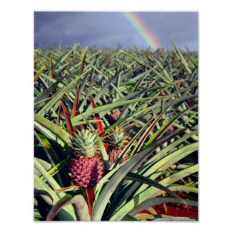 Pineapple Rainbow Print print