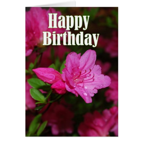 Pink Azalea Happy Birthday Cards