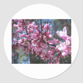 Pink Floral Branch Sticker