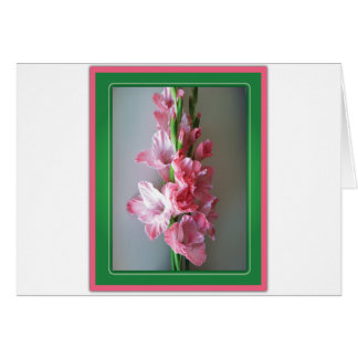 Pink Gladiolus Card